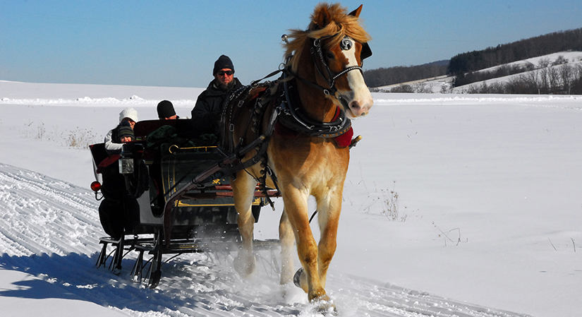 Sleigh Rides at Deep Creek Lake