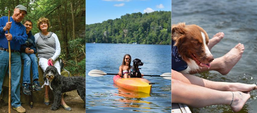 Dog Friendly Deep Creek Lake Activities