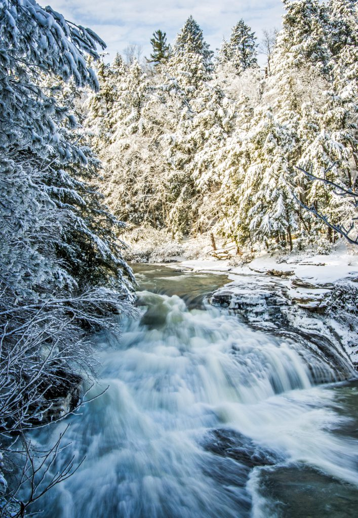 Swallow Falls State Park